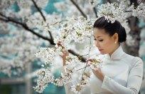 Hà Kiều Anh tôn vinh vẻ đẹp áo dài tại Hàn Quốc